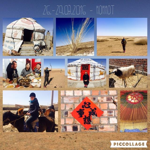 Graslands in Inner Mongolia