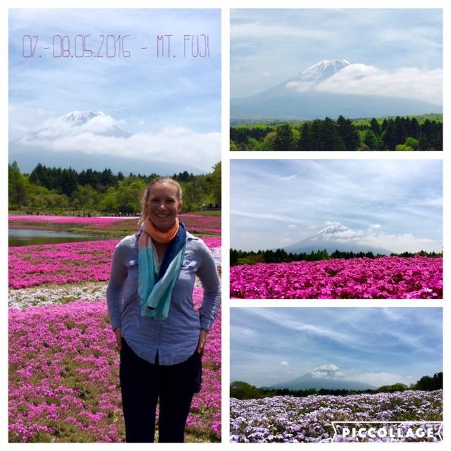 Gänsehaut am Mt. Fuji