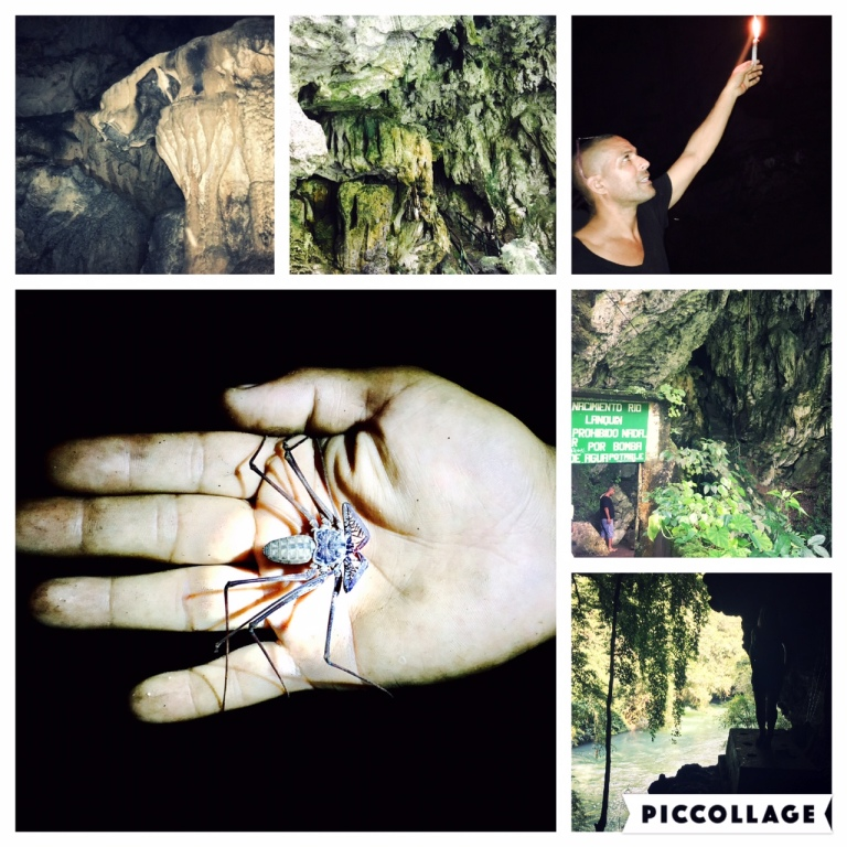 Private cave tour with guide and giant scorpion spider