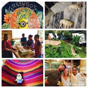 GreenGo's - wunderschönes Hostel mit tollem Essen, super Atmosphäre und netten Mitarbeitern