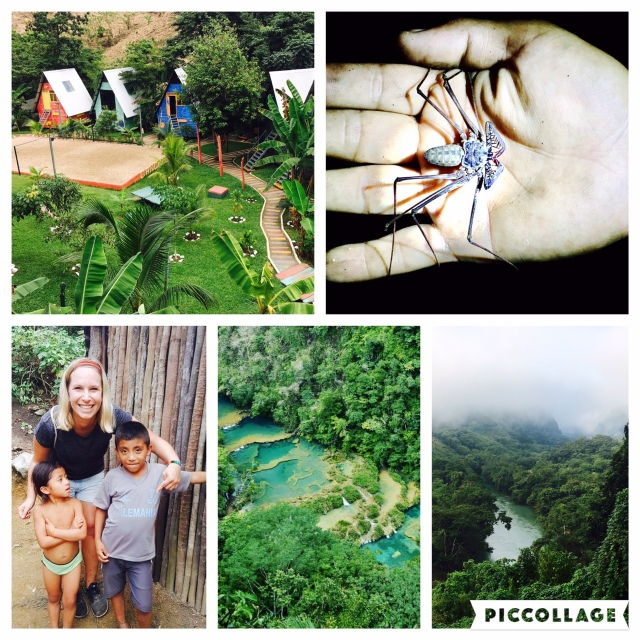 Semuc Champey in Guatemala - awesome hostel, scorpion spiders in the cave, stunning countryside and friendly people