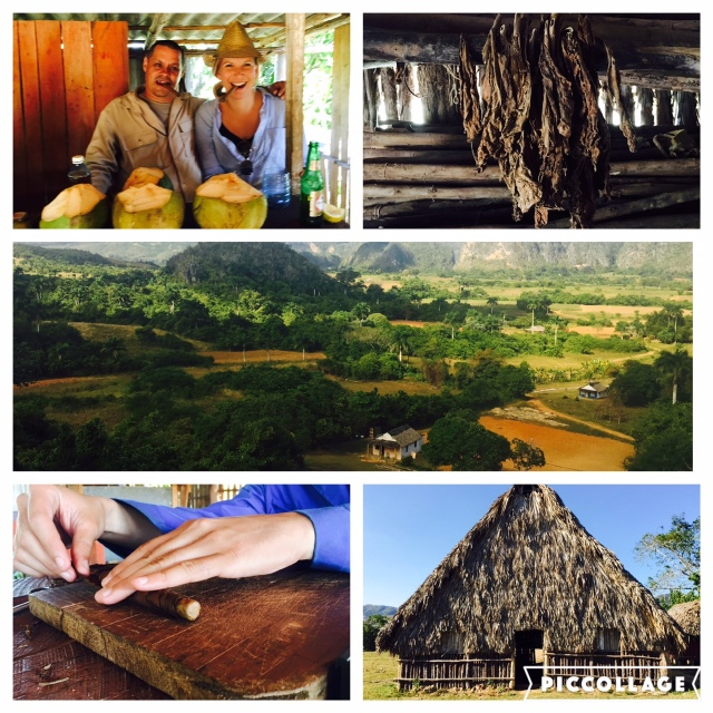 Tobacco and Coffee farms in Varadero